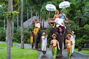 Elephant-Ride-x